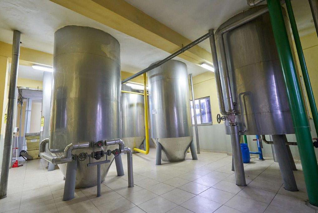 Fındık Yağı Üretim Tesisi